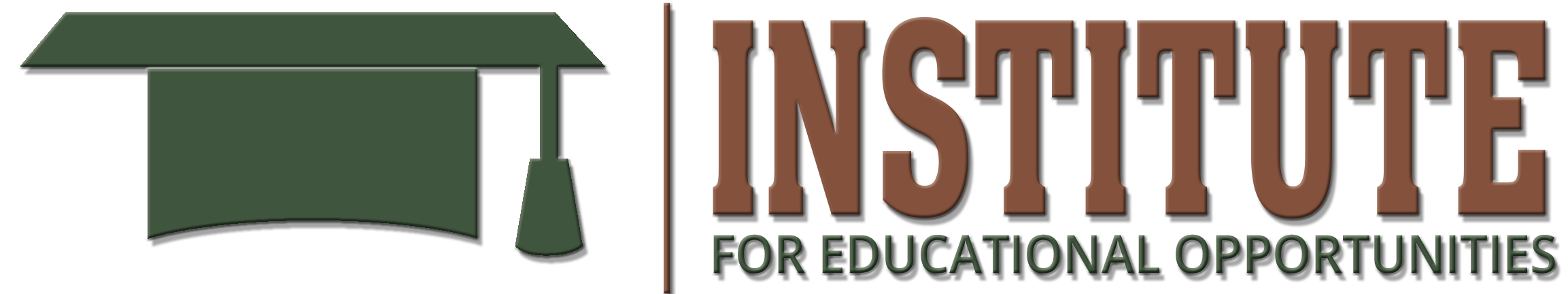 The Institute For Educational Opportunities